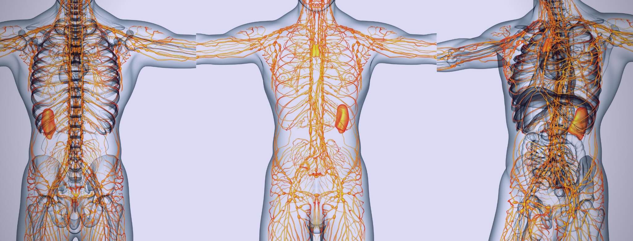 An Introduction To Lymphatic Drainage Therapy